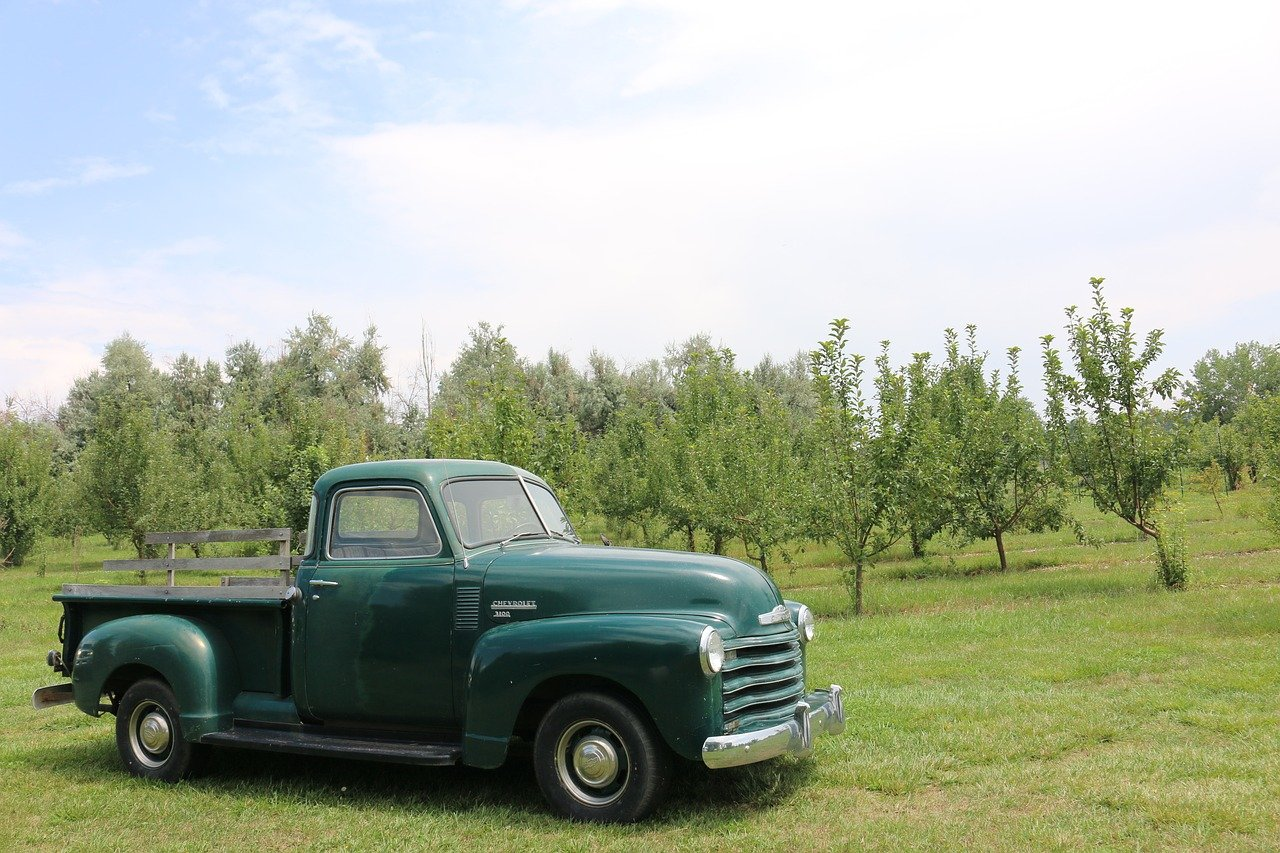 Green antique Chevy truck in front of trees