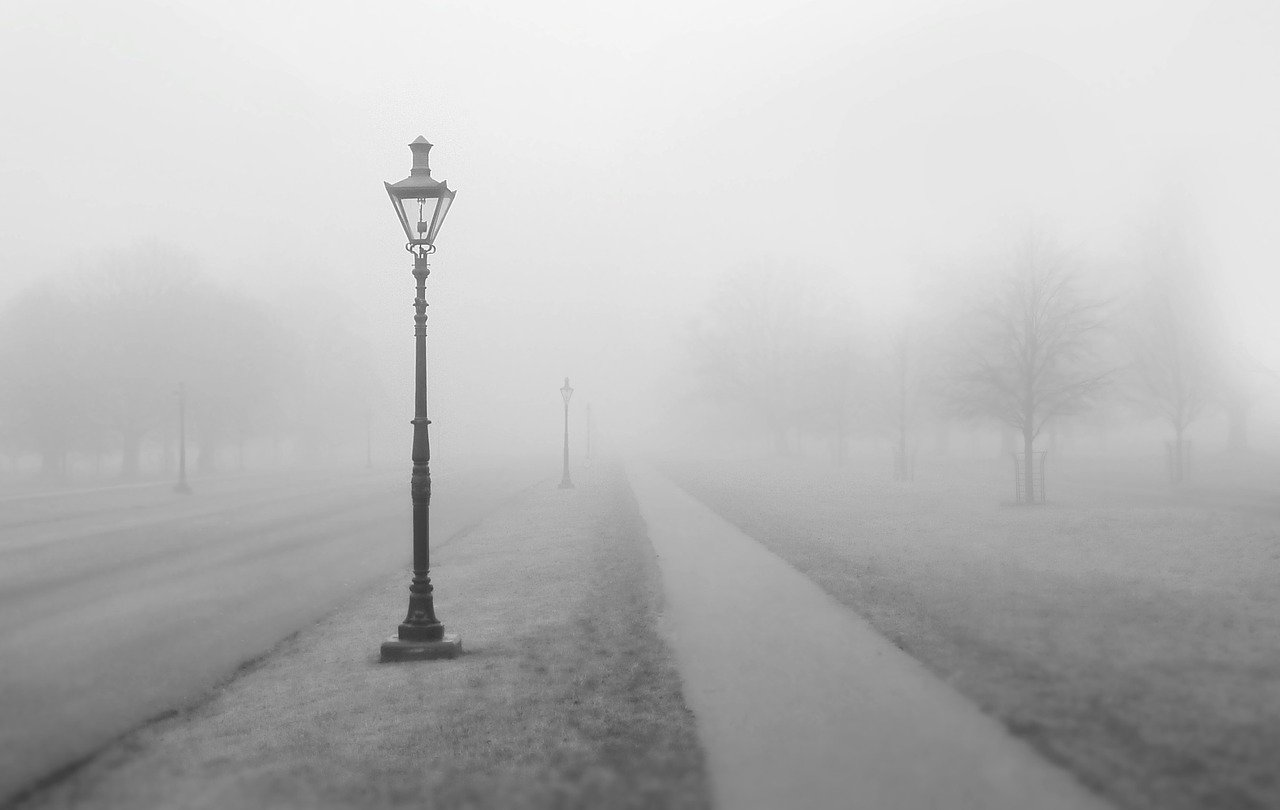Dense fog with road and lightpost